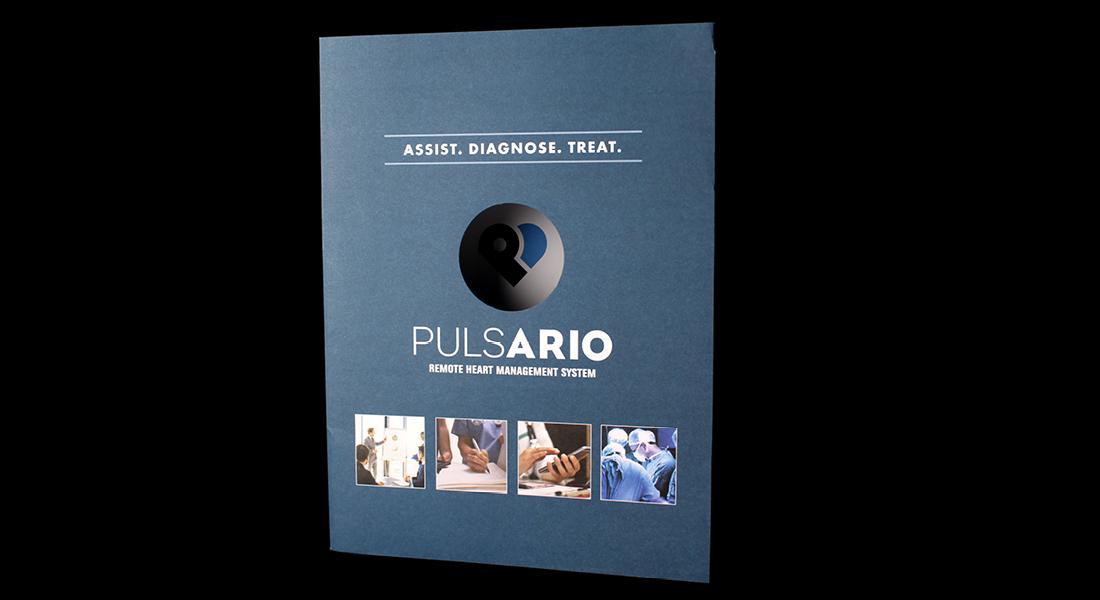 Pulsario-collateral4